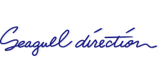 Seagull direction